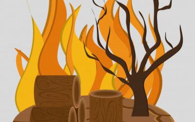 Protégeons nos maisons et notre forêt des incendies